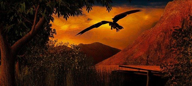 drak letící nad řekou